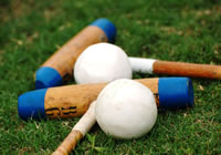story-about-polo_ball