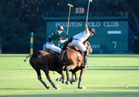 story-about-polo_goal