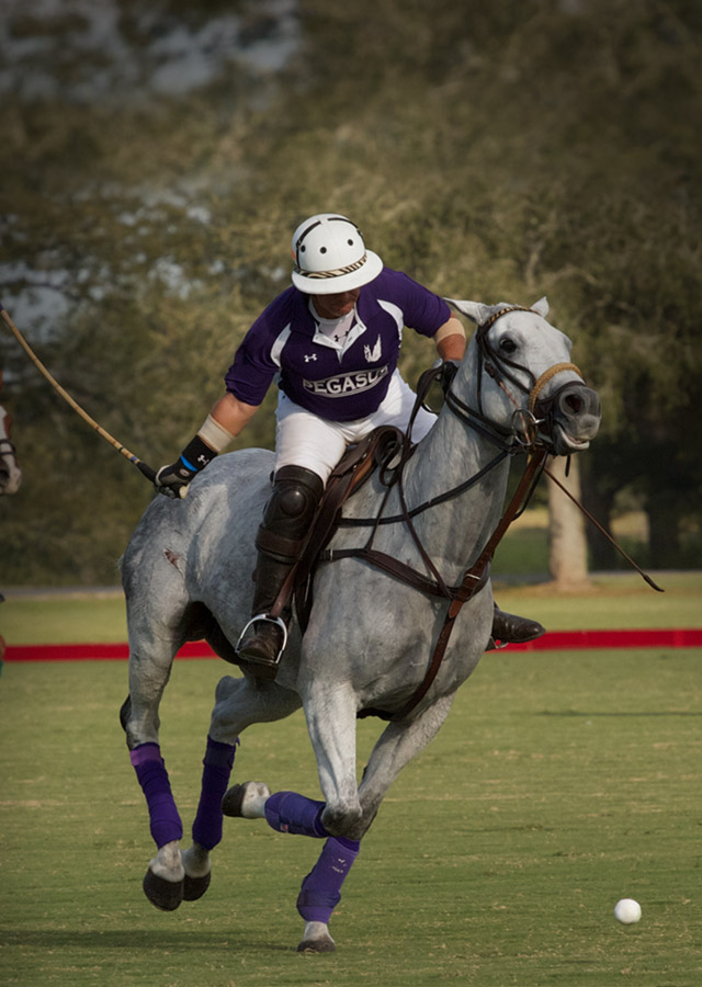 houston-polo-club-tickets
