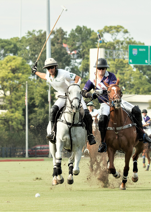 houston-polo-club-school